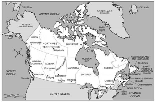 加拿大的森林覆盖面积占全国总面积的44%